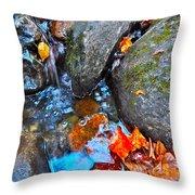 Autumn B 2015 117 Throw Pillow