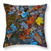 Autumn B 2015 123 Throw Pillow