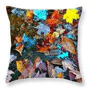 Autumn B 2015 124 Throw Pillow