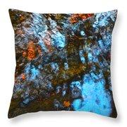 Autumn B 2015 129 Throw Pillow