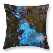 Autumn B 2015 130 Throw Pillow