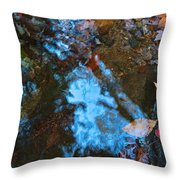 Autumn B 2015 131 Throw Pillow