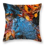 Autumn B 2015 183 Throw Pillow