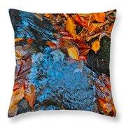 Autumn B 2015 185 Throw Pillow