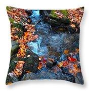 Autumn B 2015 186 Throw Pillow