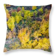 Autumn Background  Throw Pillow