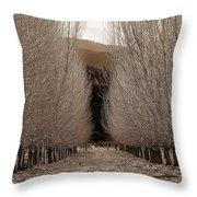 Autumn Bares Her Trees Throw Pillow