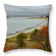 Autumn Beachcombers  Throw Pillow