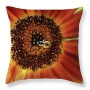 Autumn Beauty Sunflower Throw Pillow