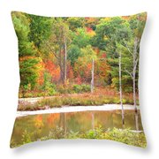 Autumn Beaver Pond Throw Pillow