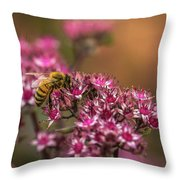 Autumn Bee On Flowers Throw Pillow