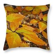 Autumn Beech  Throw Pillow by Michael Peychich