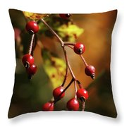 Autumn Berries Throw Pillow