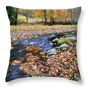 Autumn Birch River Throw Pillow