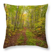Autumn Birch Woods Throw Pillow