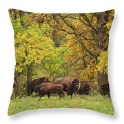 Autumn Bison Throw Pillow