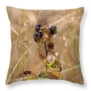 Autumn Blackberries Throw Pillow