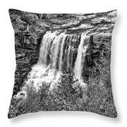 Autumn Blackwater Falls Bw Throw Pillow