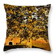 Autumn Boredom Throw Pillow