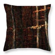Autumn Branch Throw Pillow