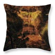 Autumn By The Argyle Creek Throw Pillow