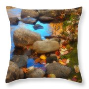 Autumn By The Creek Throw Pillow