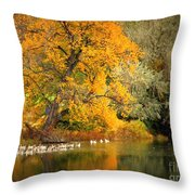 Autumn Calm Throw Pillow
