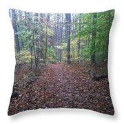Autumn Calm Throw Pillow