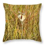 Autumn Caped Throw Pillow