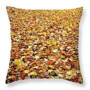 Autumn Carpet Throw Pillow