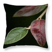 Autumn Change Throw Pillow