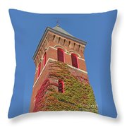 Autumn Color Match Throw Pillow