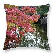 Autumn Color Poster Throw Pillow
