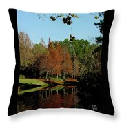 Autumn Color Reflected Throw Pillow