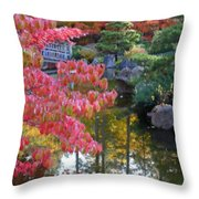 Autumn Color Reflection - Digital Painting Throw Pillow