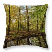 Autumn Color Reflections Throw Pillow
