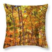 Autumn Colored Throw Pillow