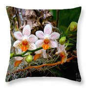 Autumn Colored Orchids Throw Pillow