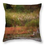 Autumn Colors 26 Throw Pillow