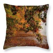 Autumn Colors 37 Throw Pillow