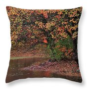 Autumn Colors By The Pond Throw Pillow
