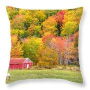 Autumn Colors Near Lake Ainslie  Throw Pillow