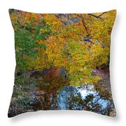 Autumn Colors Of Reflection Throw Pillow