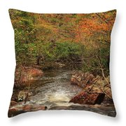 Autumn Colors On Pickle Creek 1 Throw Pillow