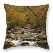 Autumn Colors On Pickle Creek 2 Throw Pillow