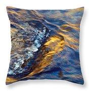 Autumn Colors River Rapids Throw Pillow