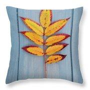 Autumn Colours On Blue Throw Pillow