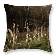 Autumn Cornstalks Throw Pillow