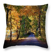 Autumn Country Lane Throw Pillow
