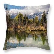 Autumn Day At Schwabacher's Landing Throw Pillow